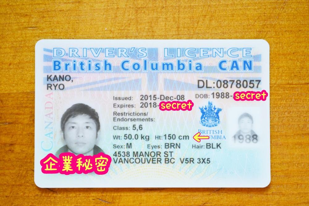 カナダ・ブリティッシュコロンビアの運転免許証の写真