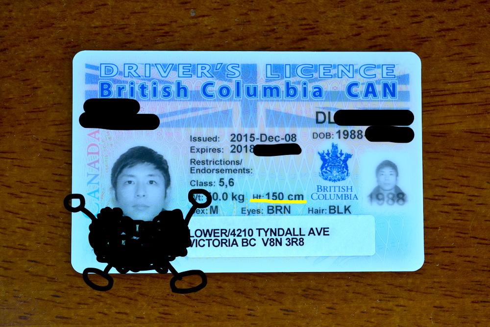 カナダの運転免許証の写真2