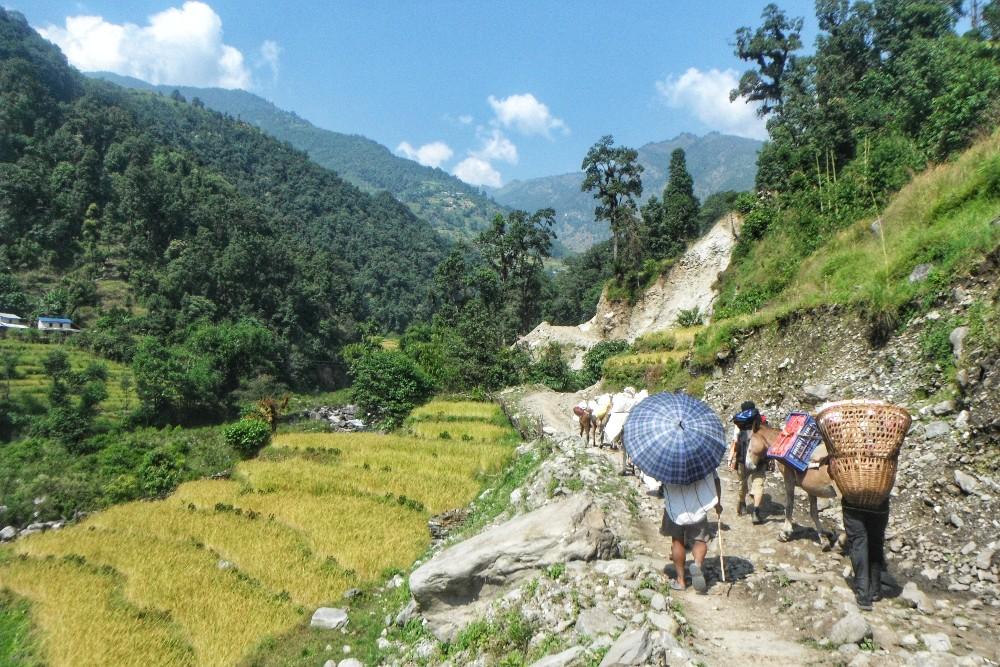 ネパール・ポカラ・アンナプルナトレッキング(畑と人々)の写真