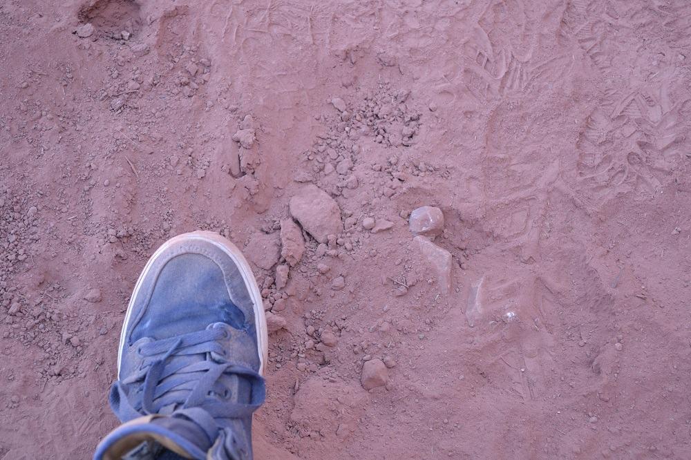 グランドキャニオンの土の写真