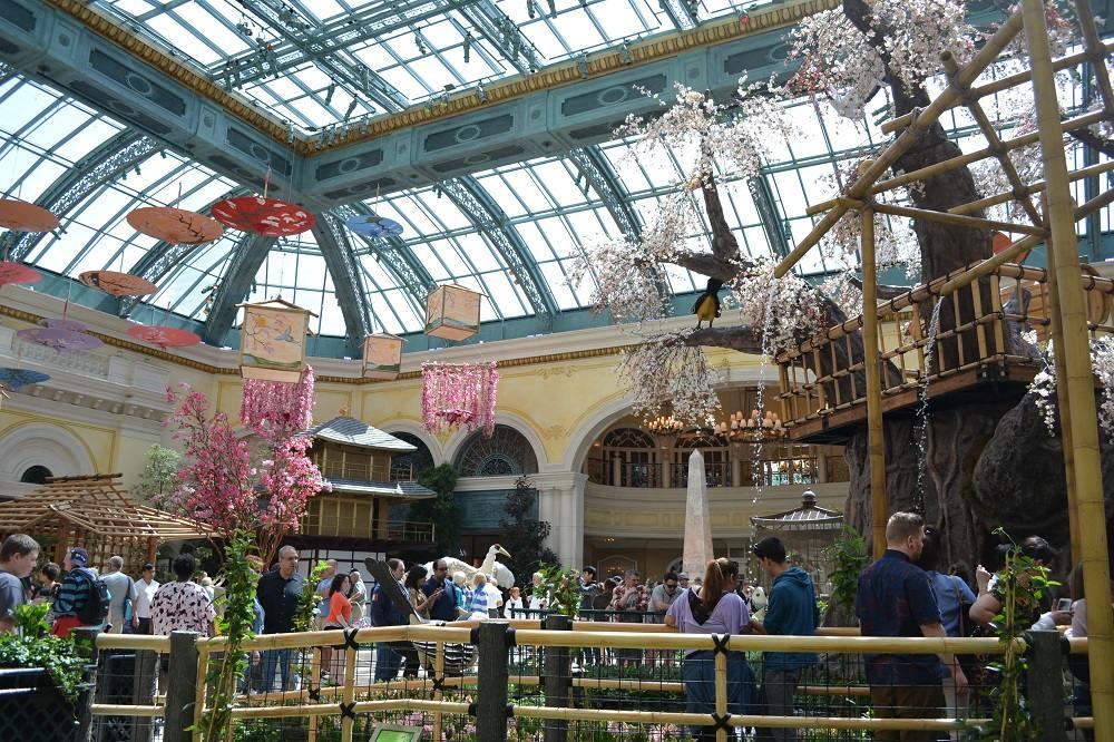 Conservatory & Botanicalの写真