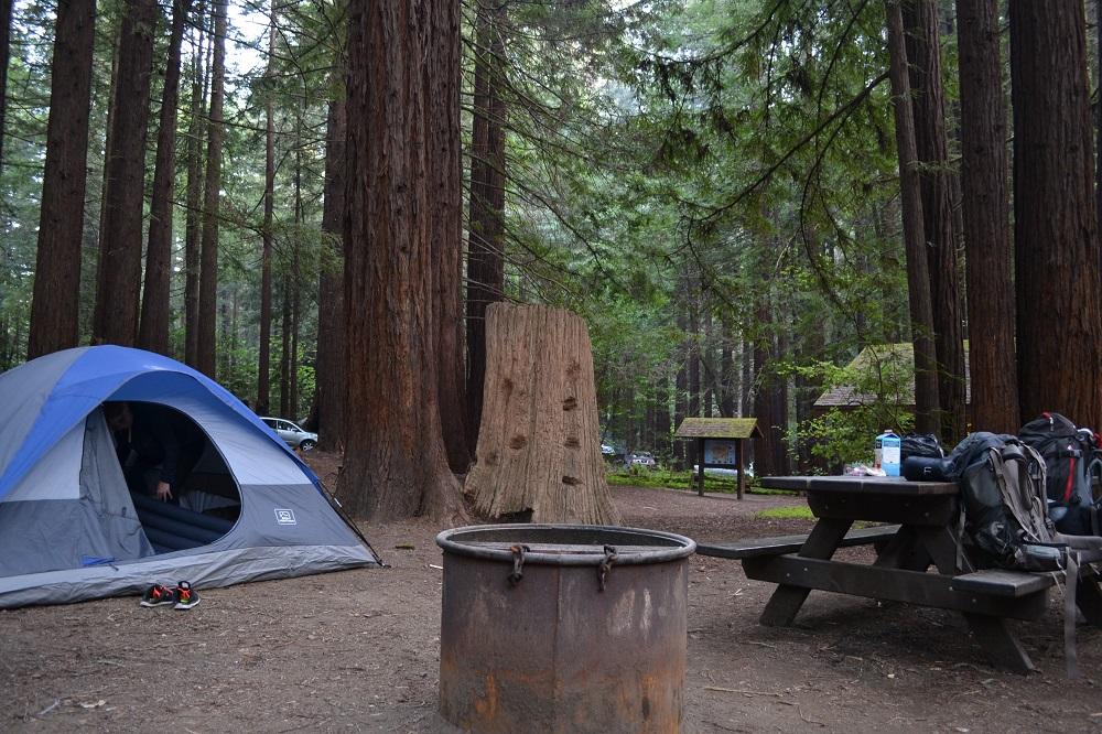 森の中でテント泊した写真