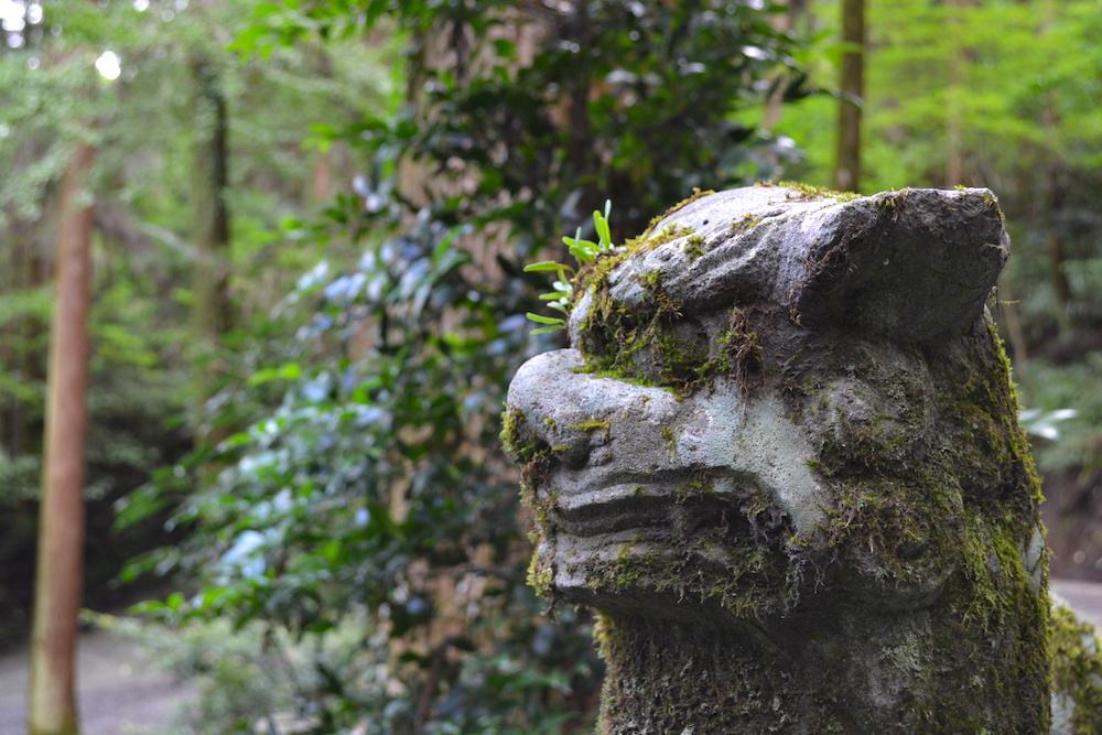 熊本県阿蘇|上色見熊野座神社の狛犬の写真