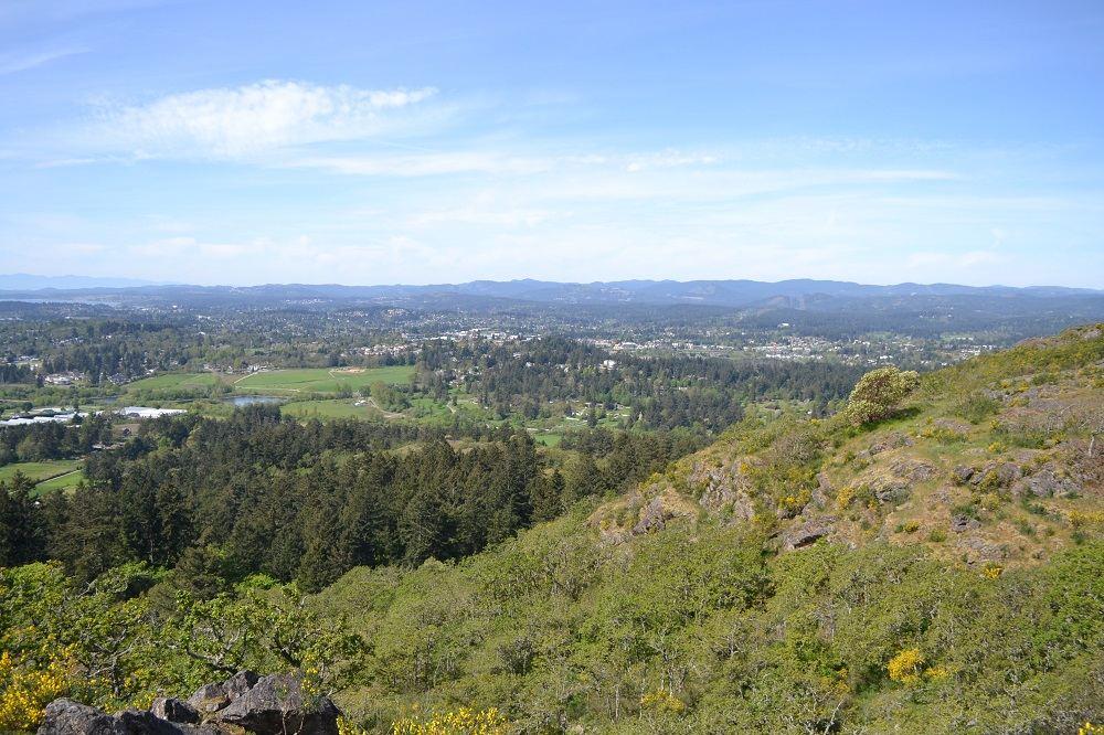 ダグラス山頂からの景色の写真