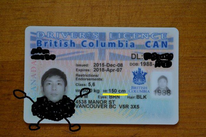 カナダの運転免許証の写真