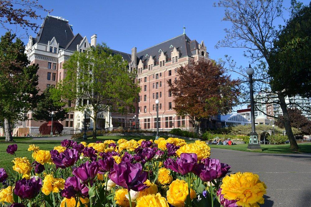 花とFairmont empressの写真