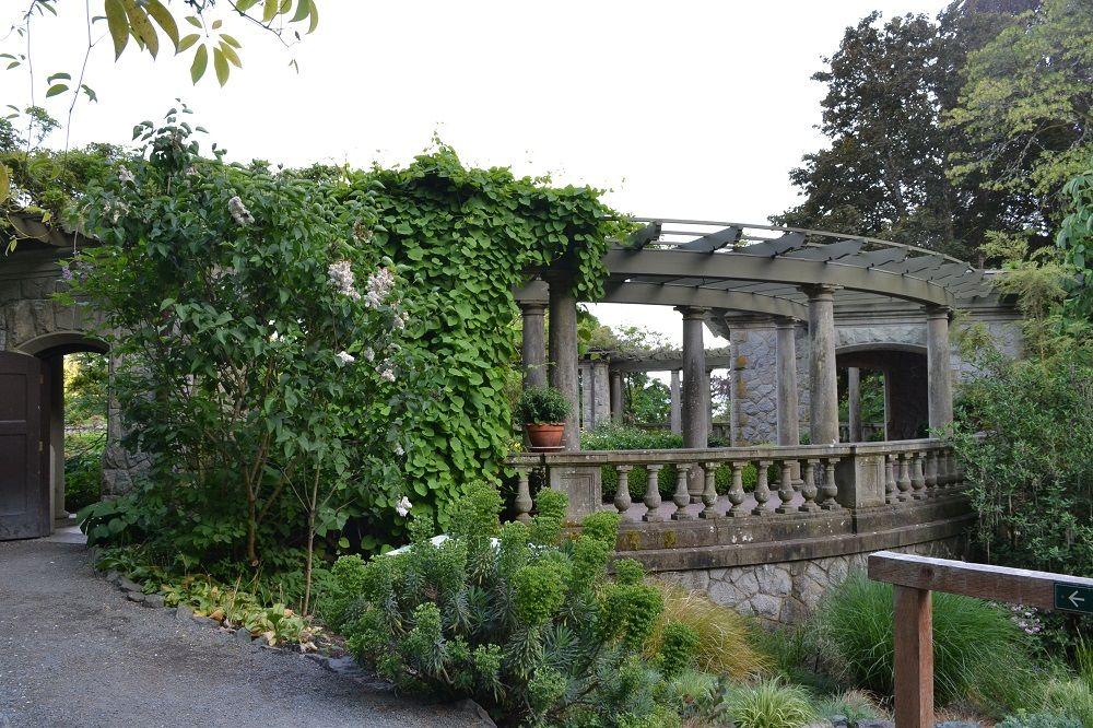 ロイヤルロードユニバーシティの庭2の写真