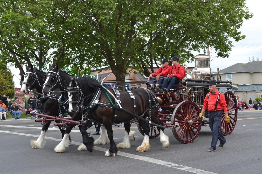 3馬力の馬車の写真