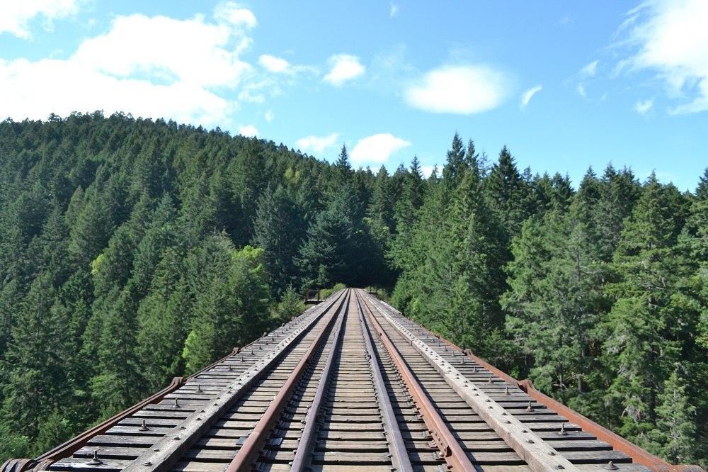 カナダのビクトリアで度胸試し!?|Goldstream Provincial Park
