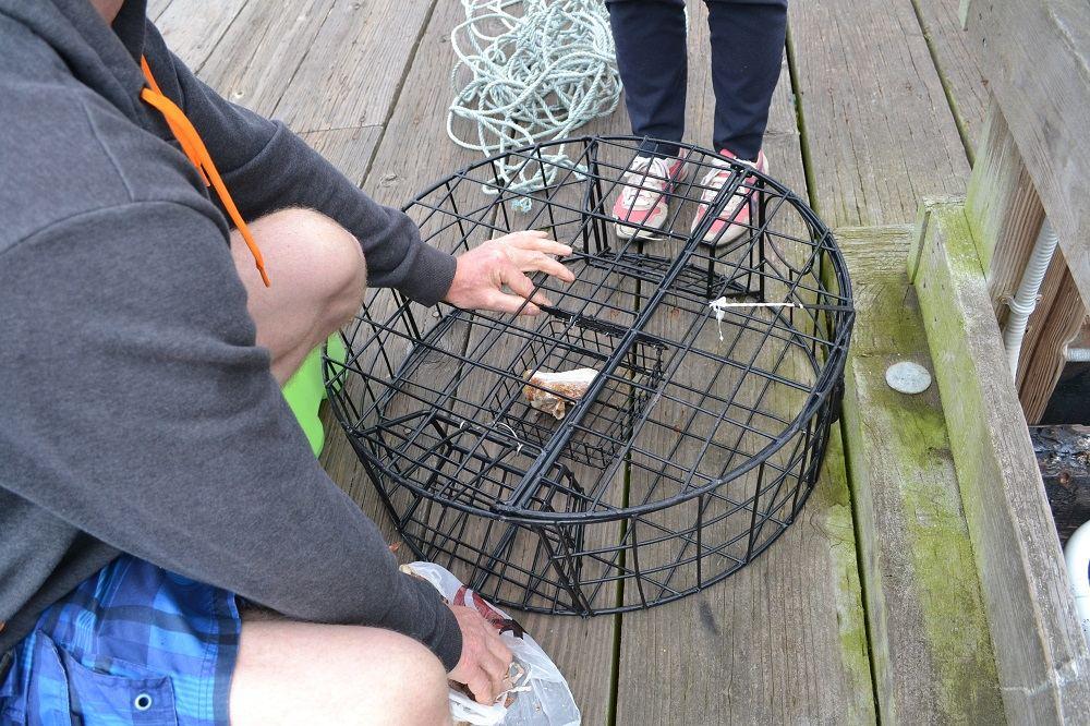 カナダで蟹漁に挑戦の写真