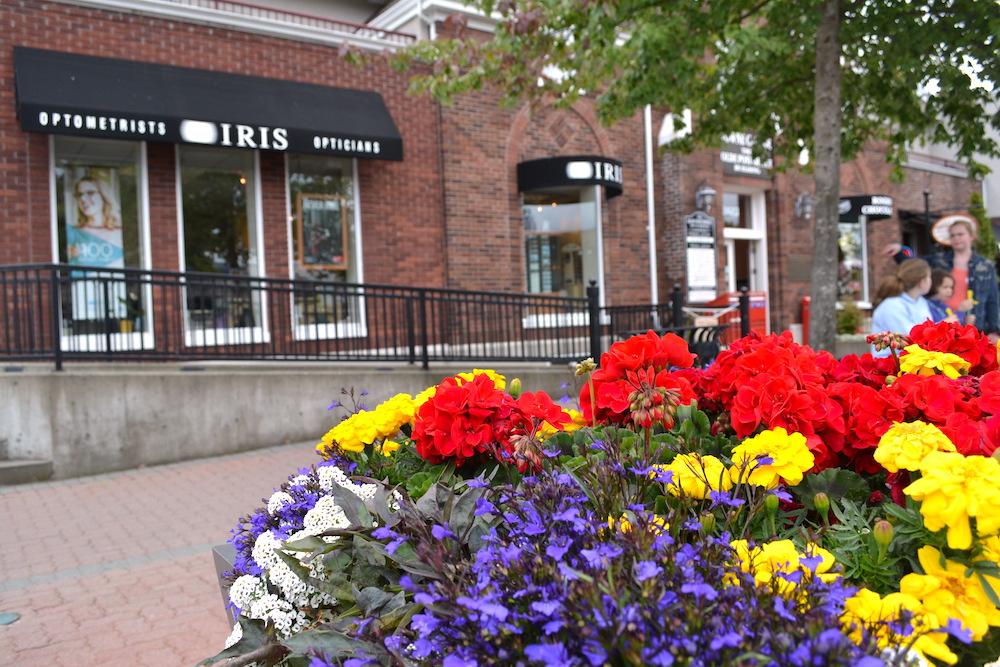 カナダ・バンクーバーアイランドの町シドニー(お花)の写真