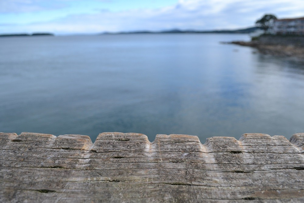 カナダのシドニーの蟹漁スポットの写真
