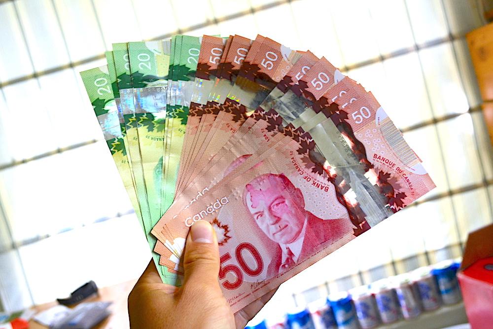 カナダドル紙幣の写真