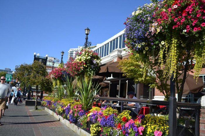 ビクトリアのレストランの花の写真