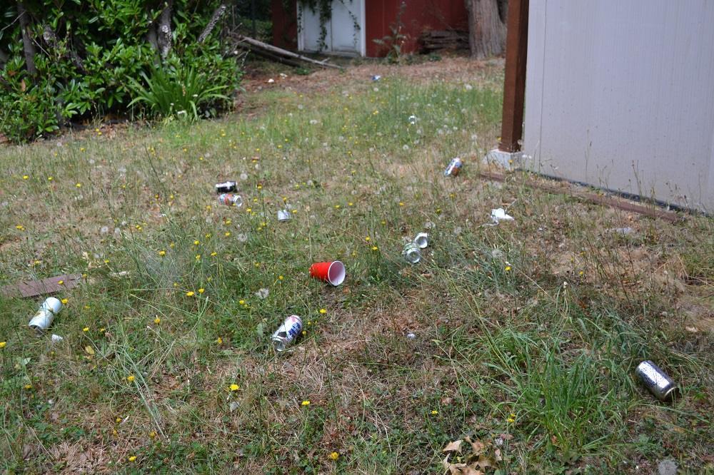 ビクトリアのパーティ後の庭の写真