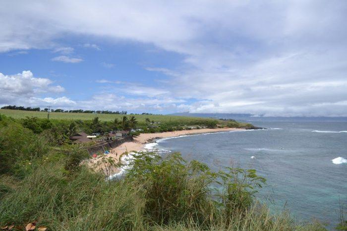 マウイ島の海とサトウキビ畑の写真