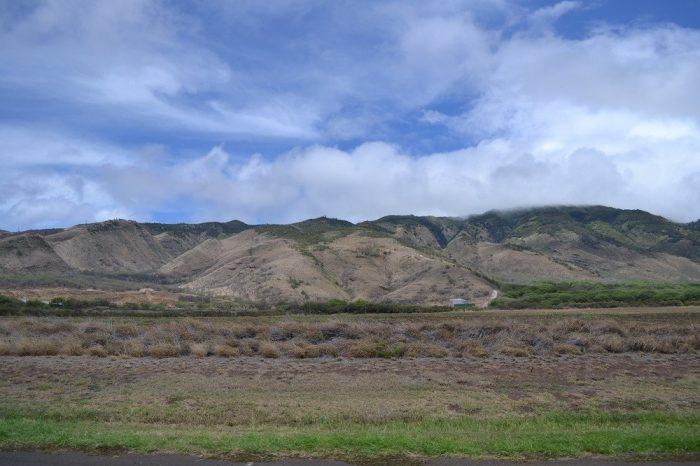 マウイ島の景色の写真