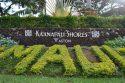 マウイ島が広くて意外と観光する時間が無かったハワイ滞在3日目。