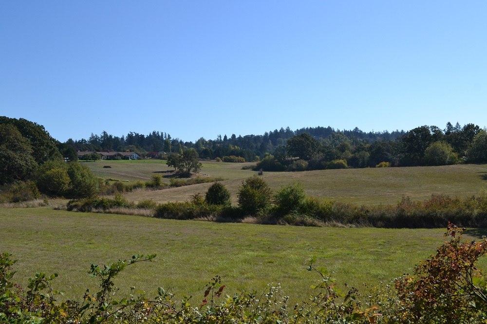 ビクトリアの牧場の写真