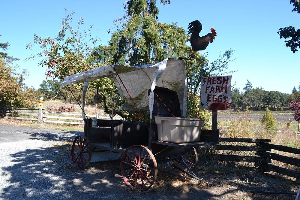 ビクトリアの牧場の売店の写真