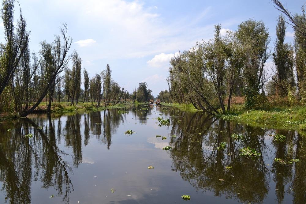 ソチミルコの運河田舎の風景の写真