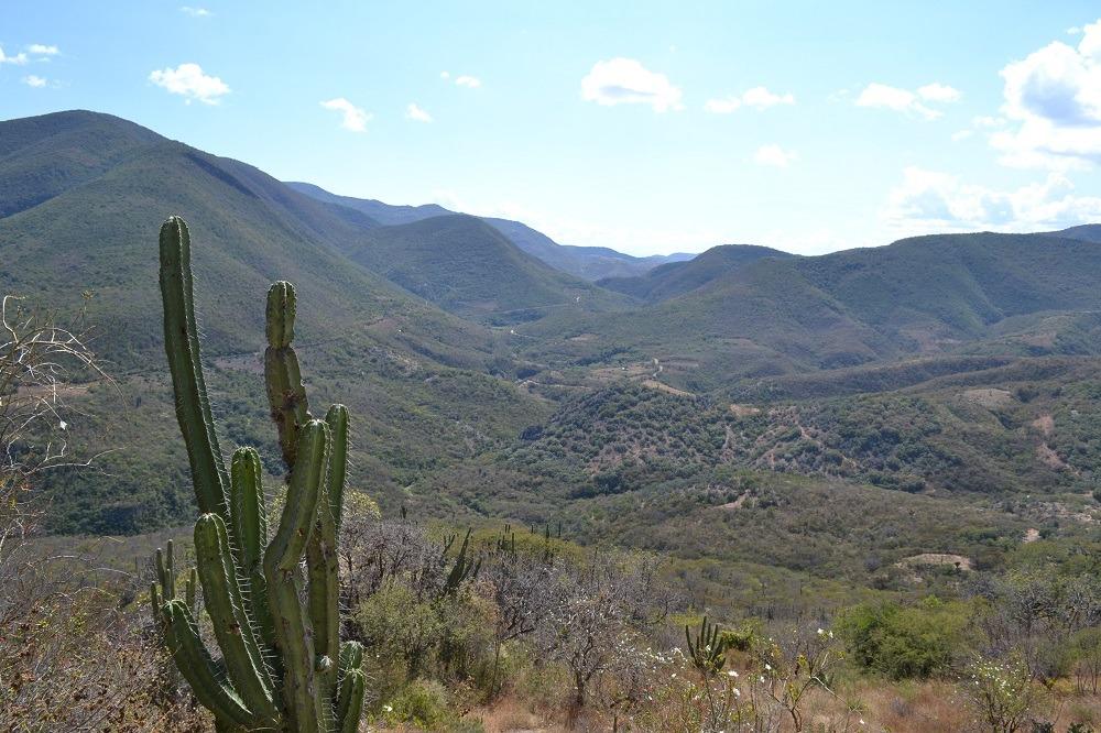 イエルベ・エル・アグア石化した滝周辺の景色の写真