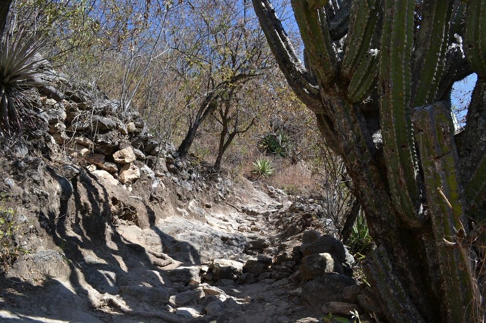 イエルベ・エル・アグア石化した滝までの道の写真