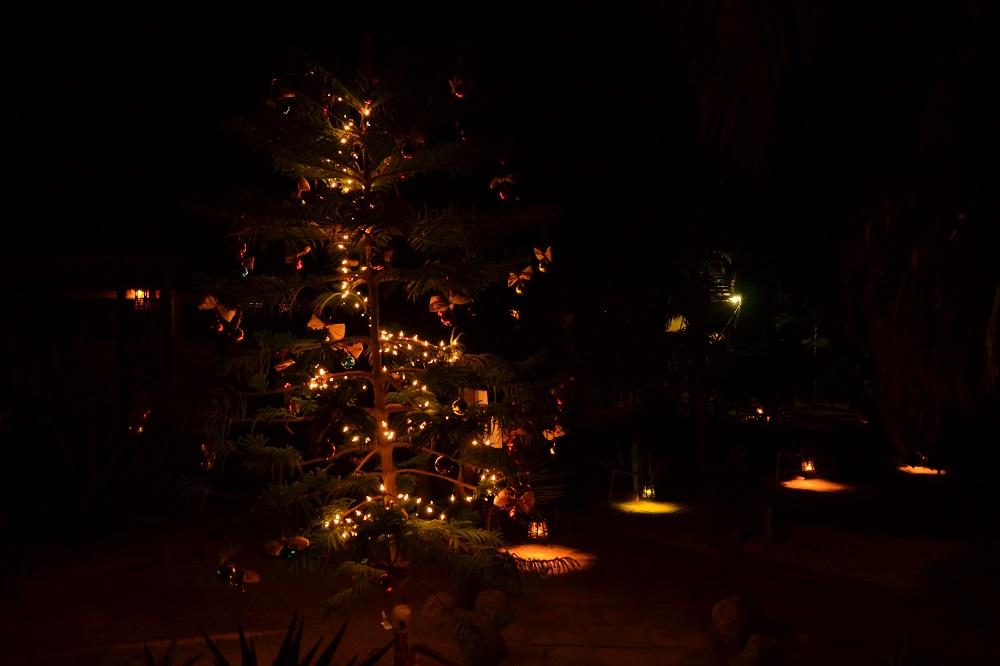 メキシコのクリスマスイルミネーションの写真