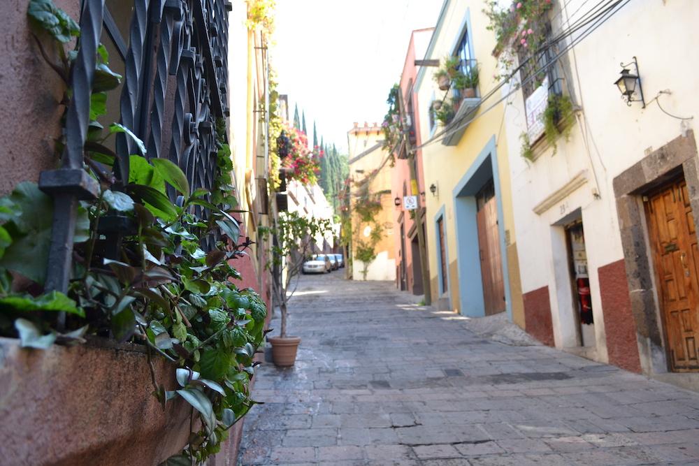 メキシコ・サンミゲルの町並み(植木)の写真