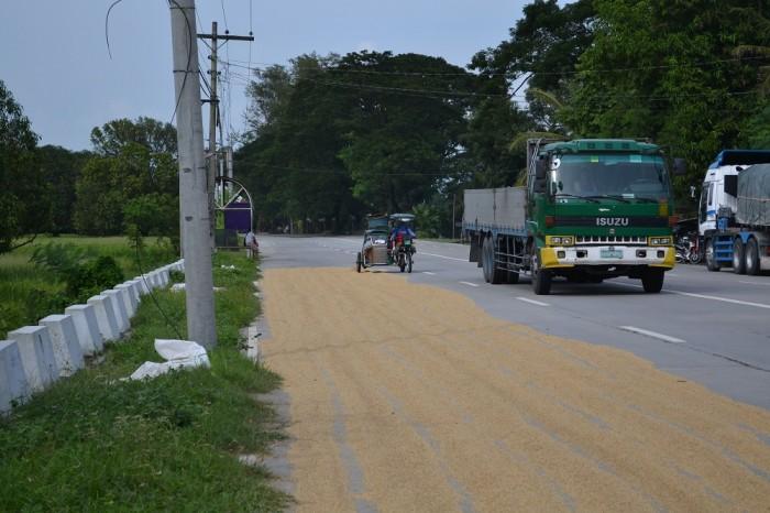 お米の上を走るバイクの写真