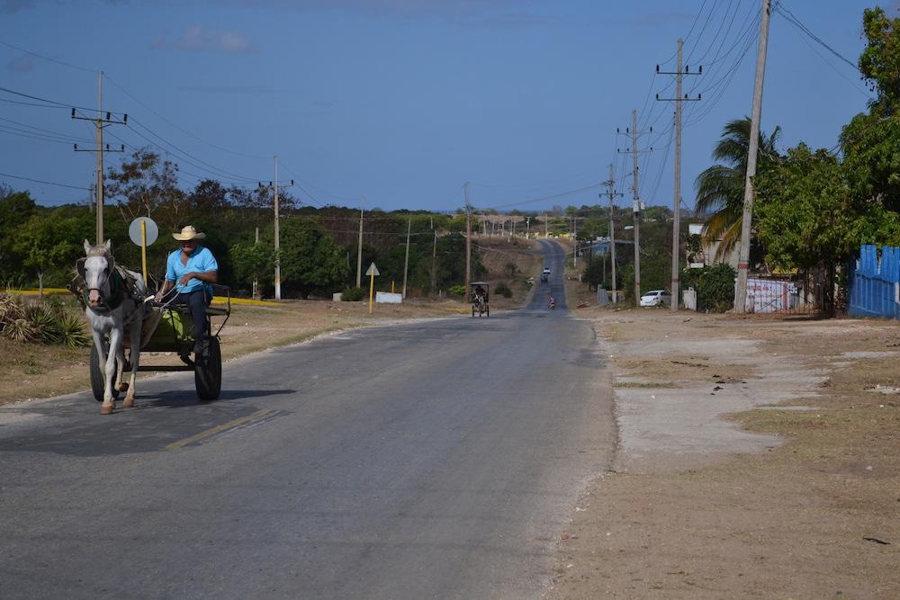 キューバ・トリニダーの郊外(馬車)の写真
