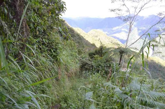 バタッド村へのショートカットの写真