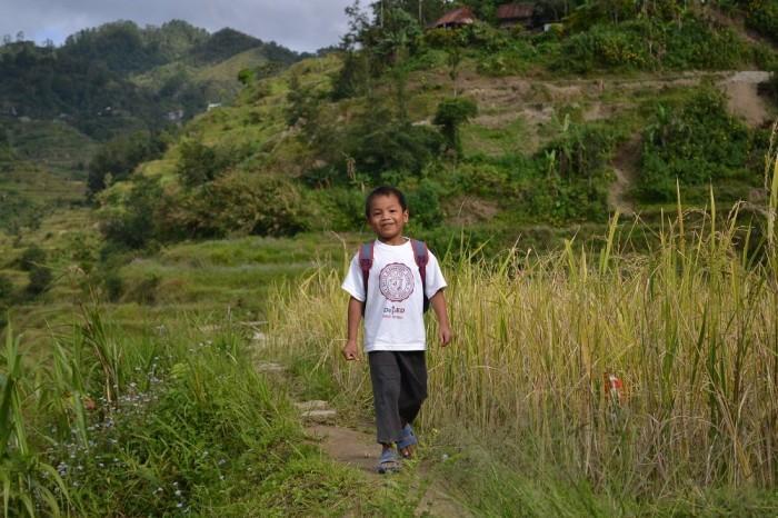 田んぼを歩く少年の写真