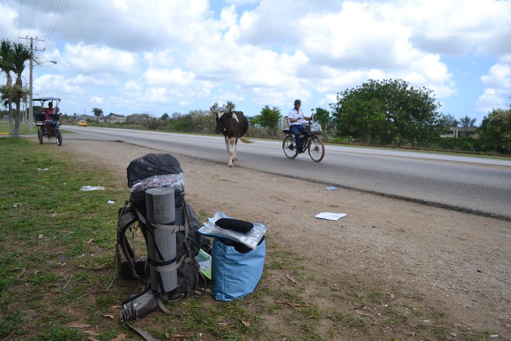 キューバ・ハバナの空港からローカルバス乗り場までの道の写真