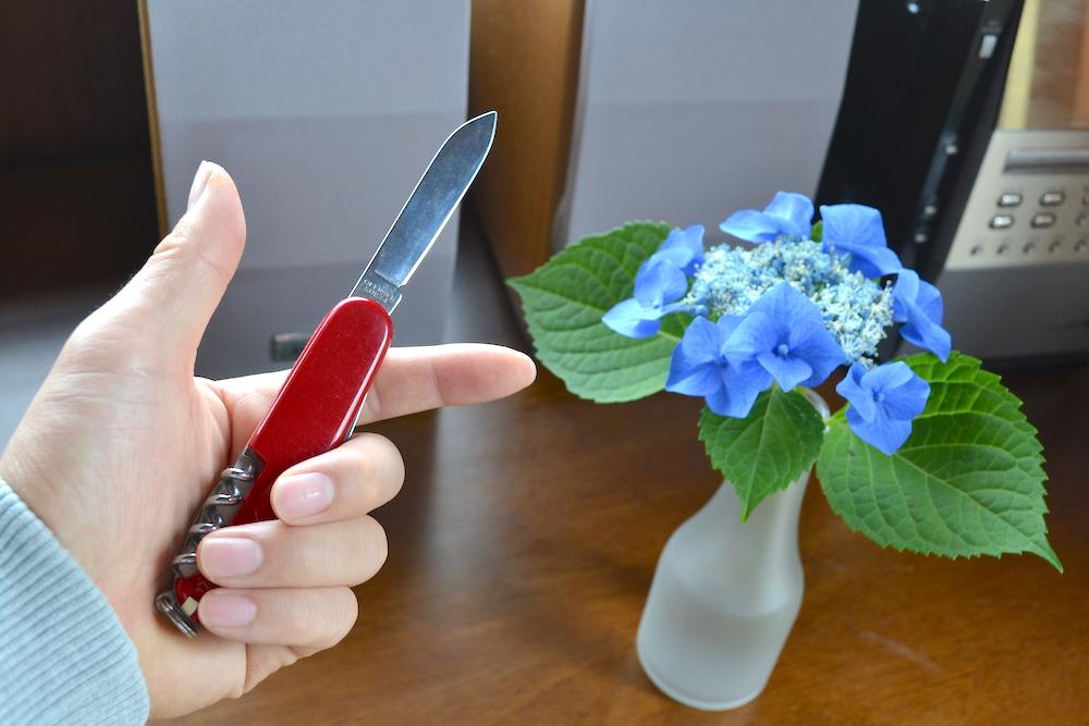 ビクトリノックスのナイフ(ラージブレード)の写真