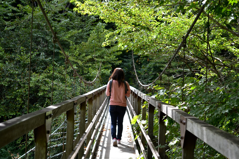 山梨県尾白川渓谷(吊り橋)の写真