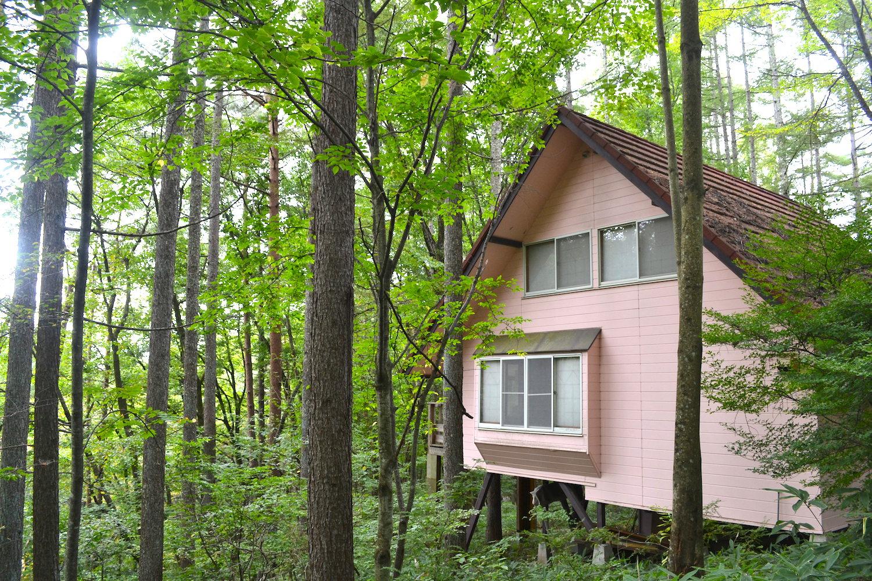 山梨県Airbnb一軒家の写真