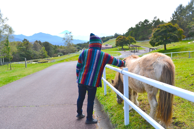 山梨県八ヶ岳まきば公園(馬とふれあい〜)の写真