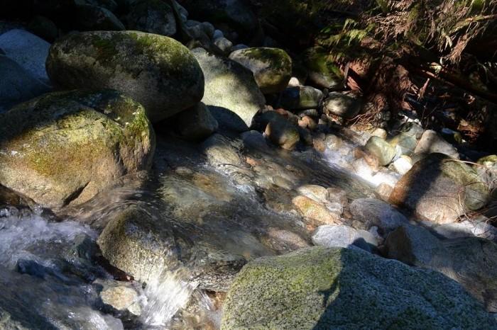 deepcoveの川の写真