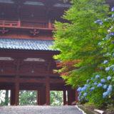 和歌山県の真言宗総本山・金剛峯寺大門の写真