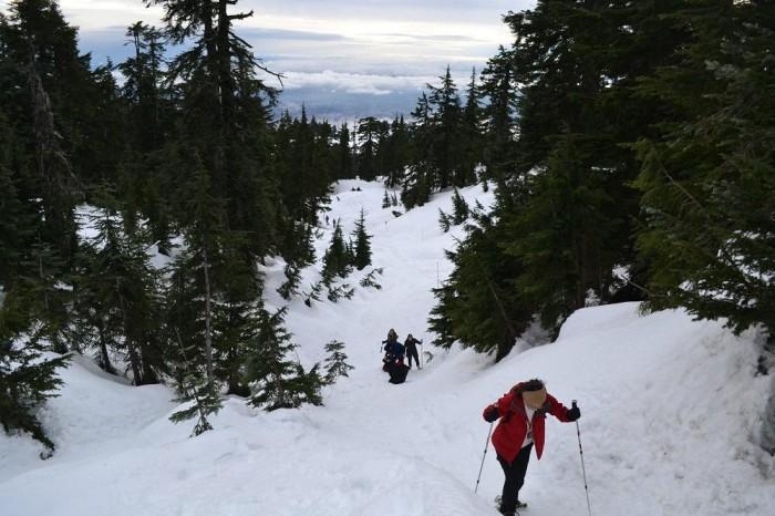 グラウス山ハイキング道の写真