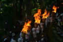 日本三大火祭り!熊野那智大社の扇祭りで1700年分の歴史を味えます〜
