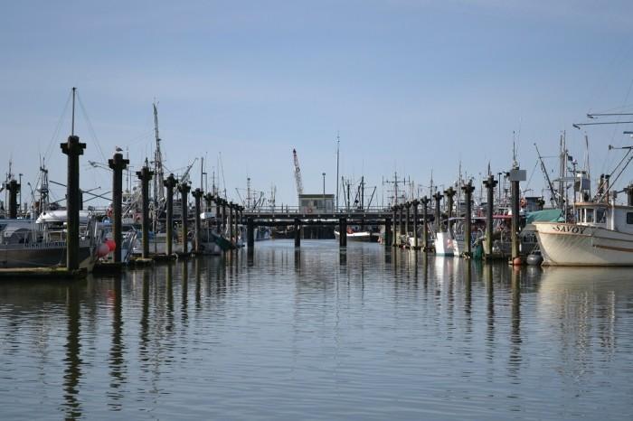 スティーブストンの漁港の写真
