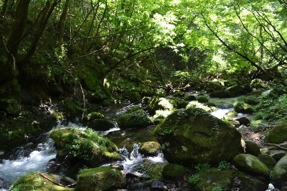 秋田県にかほ市象潟の観光スポット・元滝伏流水(川)の写真