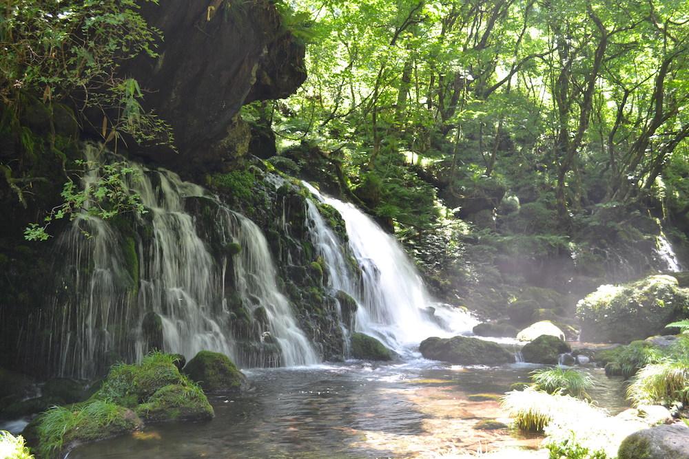 秋田県にかほ市象潟の観光スポット・元滝伏流水(横)の写真