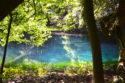 神さまが宿る泉・丸池さま|山形と秋田の美しい湧き水で癒され観光〜