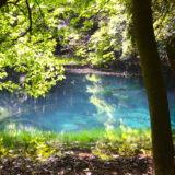 山形県庄内|観光スポット丸池様の写真