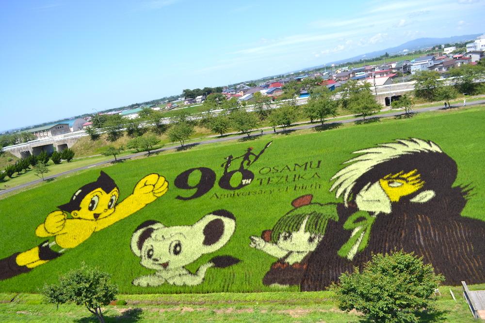 青森県南津軽|田舎館村田んぼアート2018(手塚治虫さんのキャラクター達)の写真