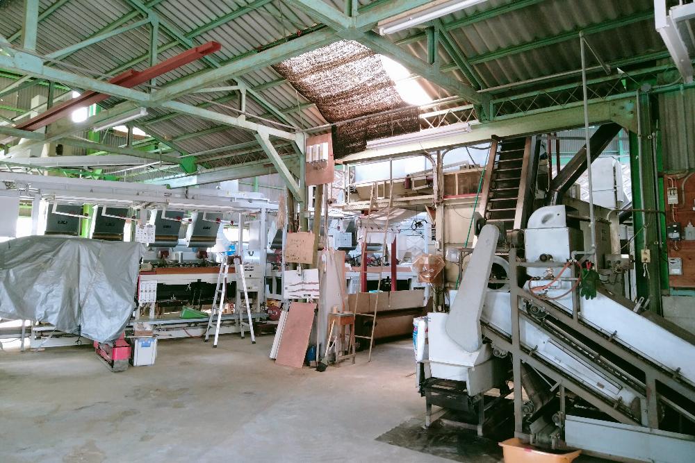 京都和束町(宇治)のお茶工場の写真