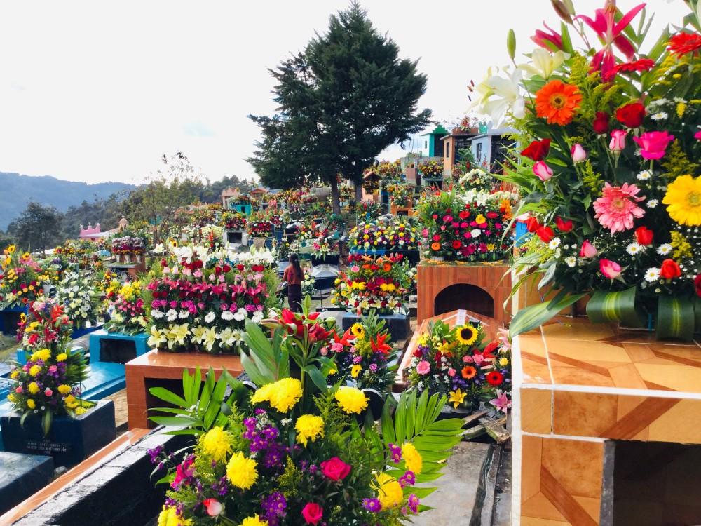 メキシコ・シナカンタンでお墓参り(死者の日のお花)の写真